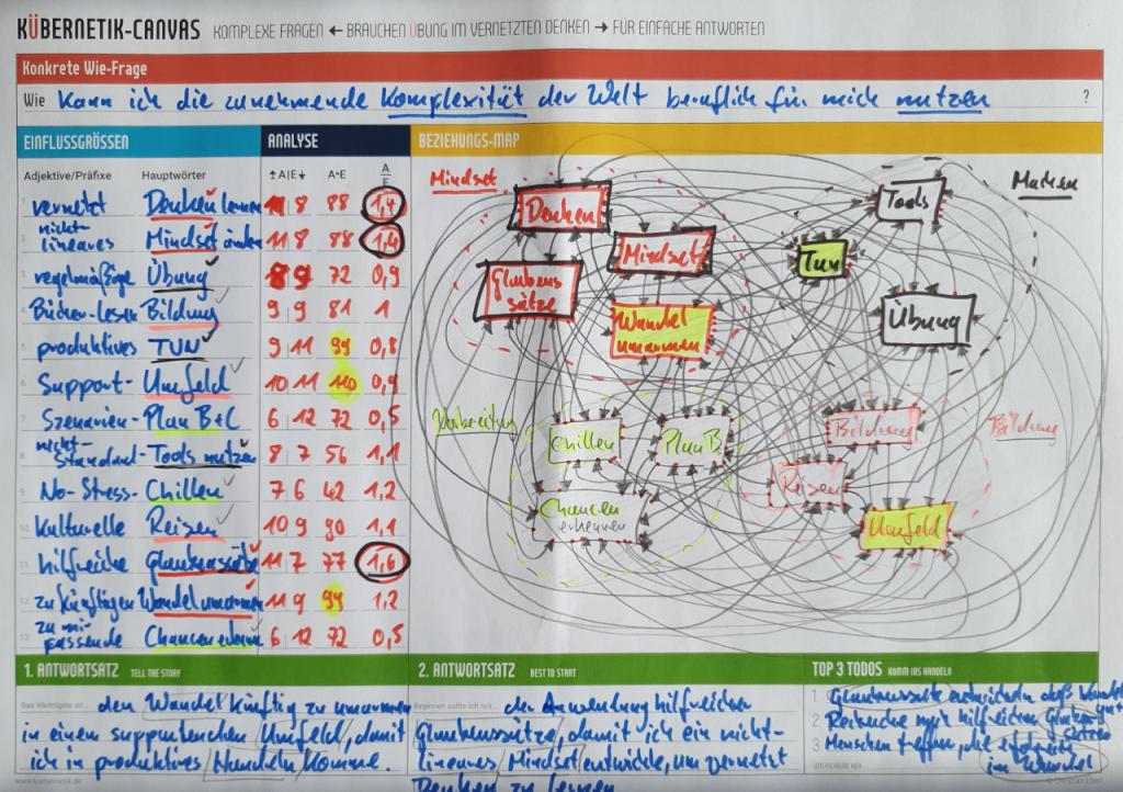 Persönliche Kübernetik: Wie zunehmende Komplexität in der Welt nutzen?