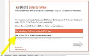 """Kübernetik-Excel - Start-Tab für Kübernetik-""""Wie-Frage"""""""